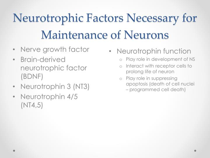 Neurotrophic factors necessary for maintenance of neurons