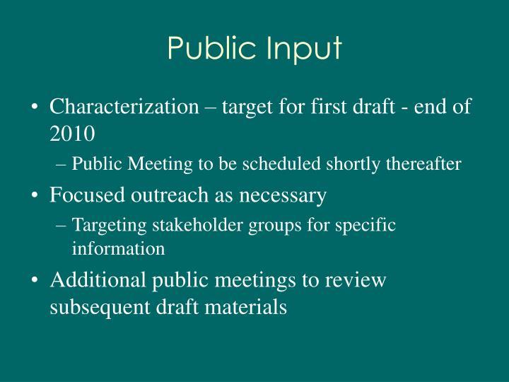 Public Input