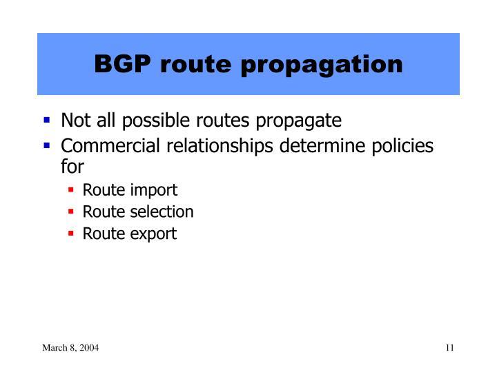 BGP route propagation