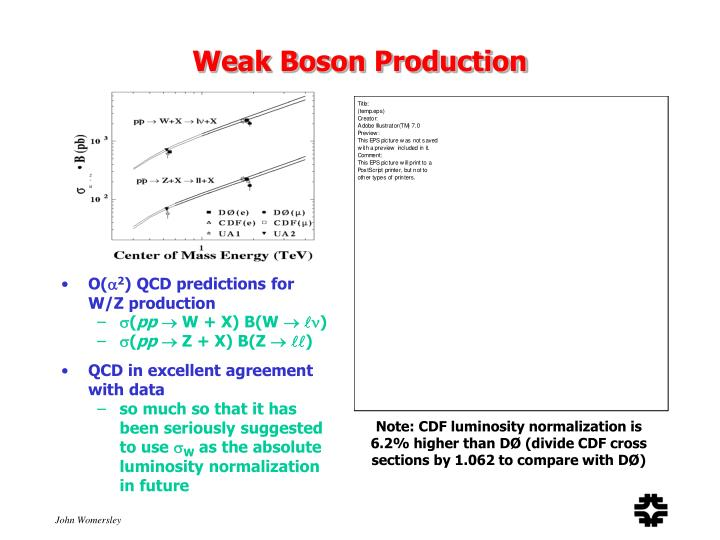 Weak Boson Production