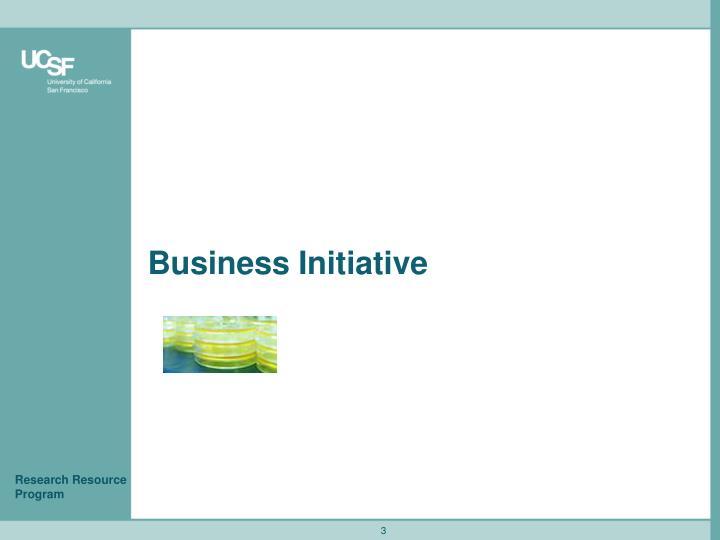 Business Initiative