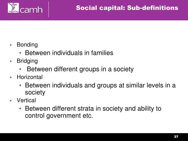 Social capital: Sub-definitions