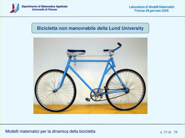 Modelli matematici per la dinamica della bicicletta