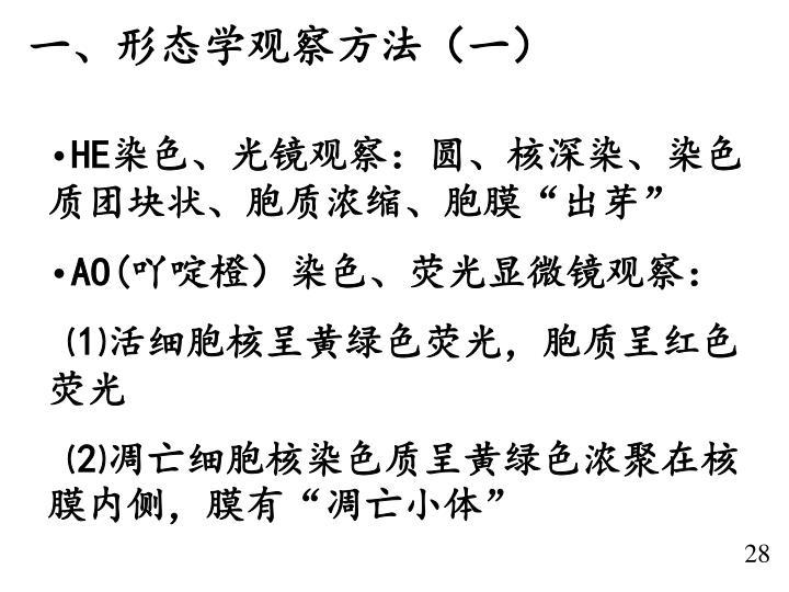 一、形态学观察方法(一)