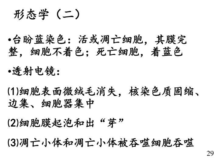 形态学(二)