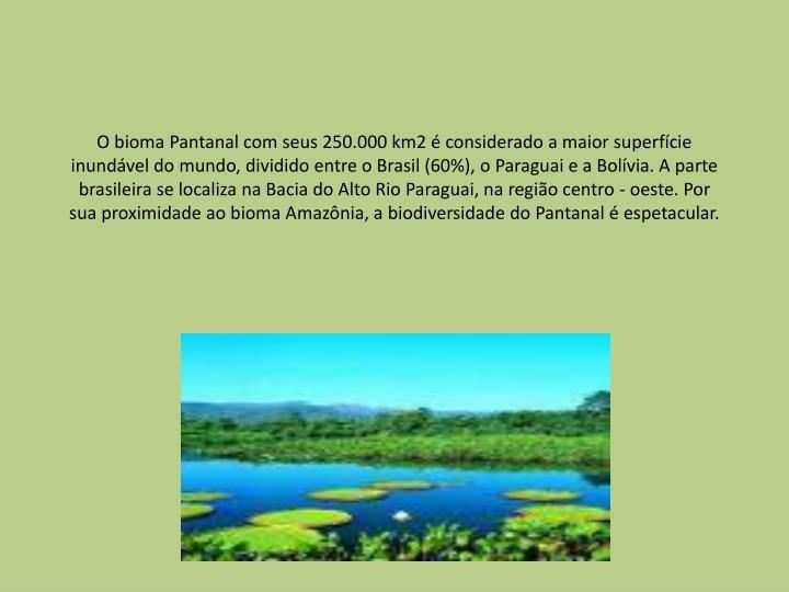 O bioma Pantanal com seus 250.000 km2 é considerado a maior superfície inundável do mundo, dividido entre o Brasil (60%), o Paraguai e a Bolívia. A parte brasileira se localiza na Bacia do Alto Rio Paraguai, na região centro - oeste. Por sua proximidade ao bioma Amazônia, a biodiversidade do Pantanal é espetacular.
