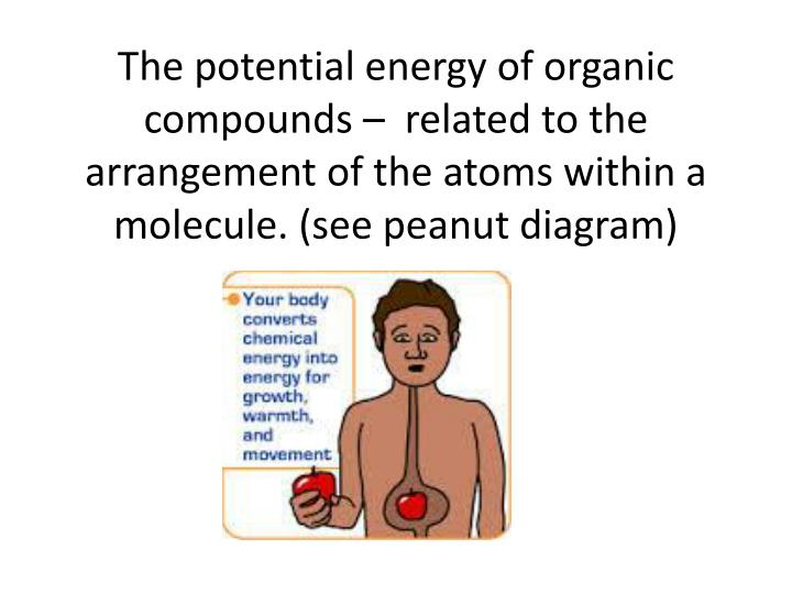 The potential energy of organic compounds