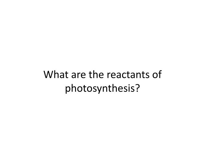 What are the reactants of photosynthesis?