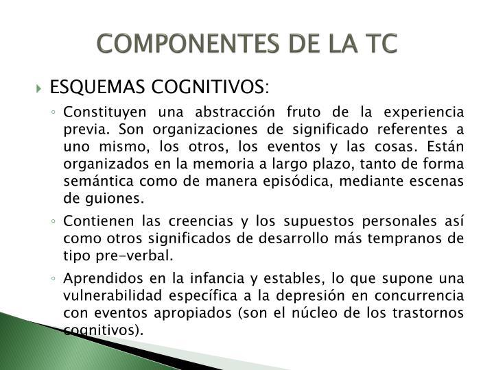 COMPONENTES DE LA TC