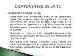 componentes de la tc1