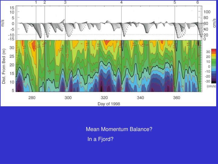 Mean Momentum Balance?