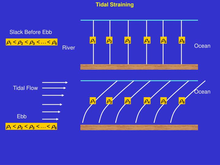 Tidal Straining