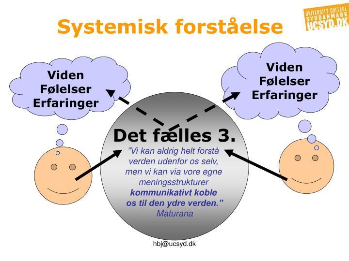 Systemisk forståelse
