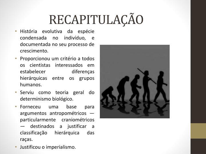 RECAPITULAÇÃO
