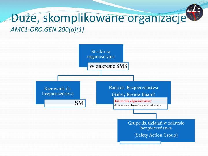 Duże, skomplikowane organizacje