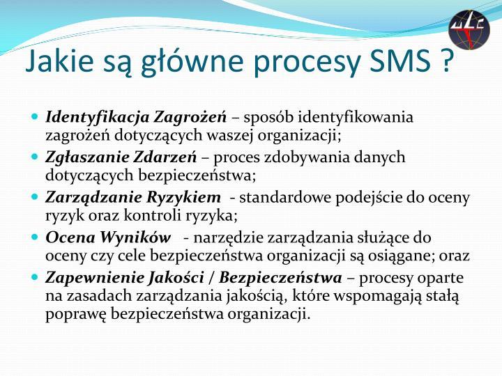 Jakie są główne procesy SMS ?