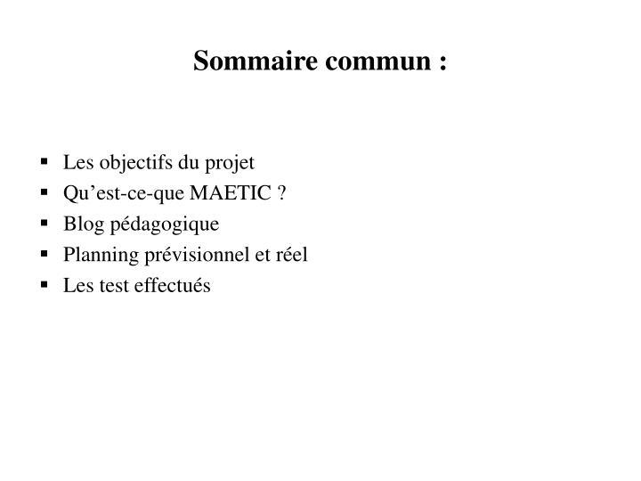 Sommaire commun :