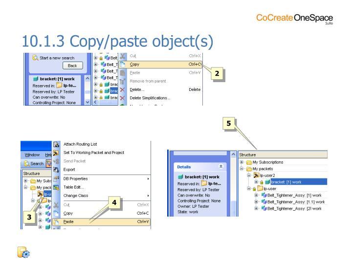 10.1.3 Copy/paste object(s)