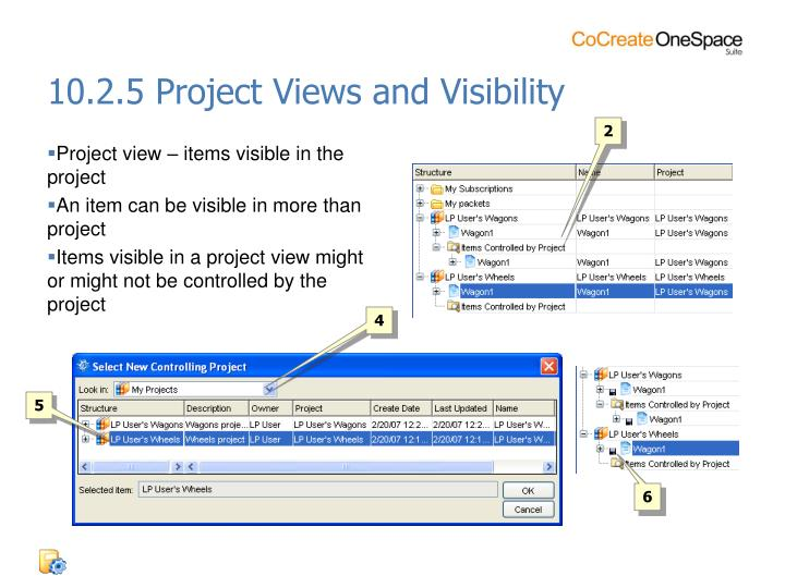 10.2.5 Project Views and Visibility