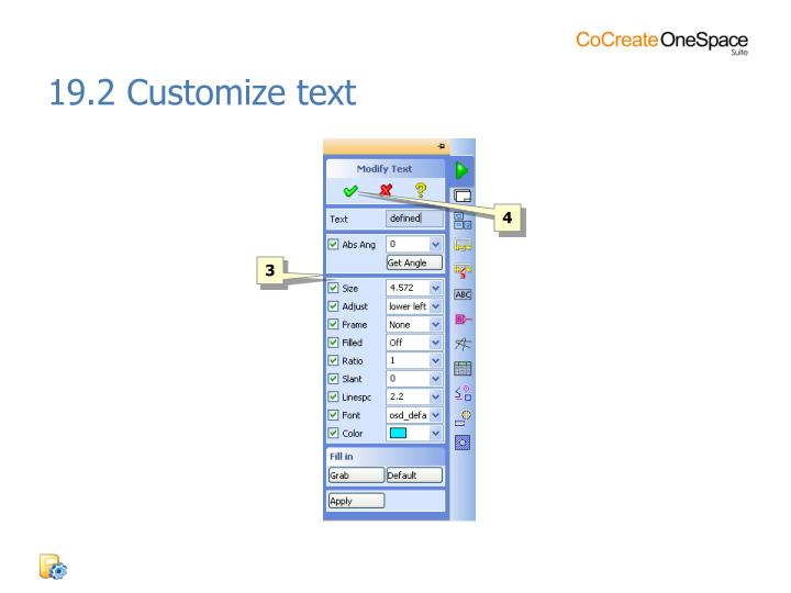 19.2 Customize text