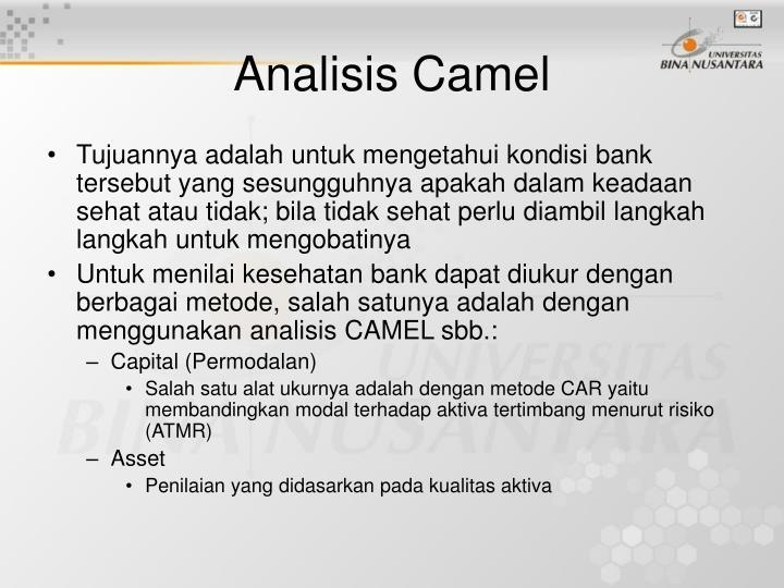Analisis Camel