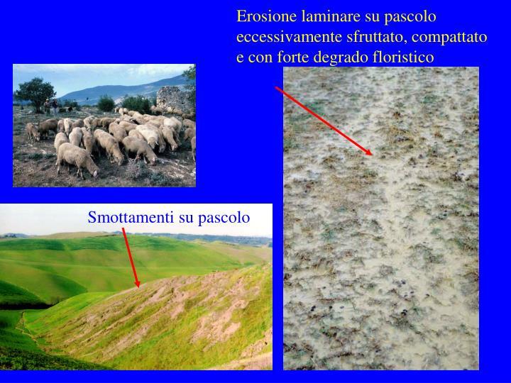 Erosione laminare su pascolo eccessivamente sfruttato, compattato e con forte degrado floristico