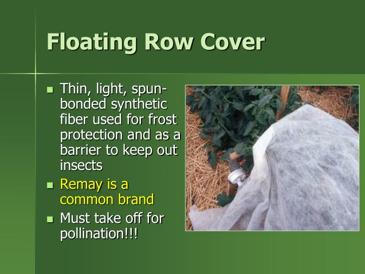 Floating Row Cover