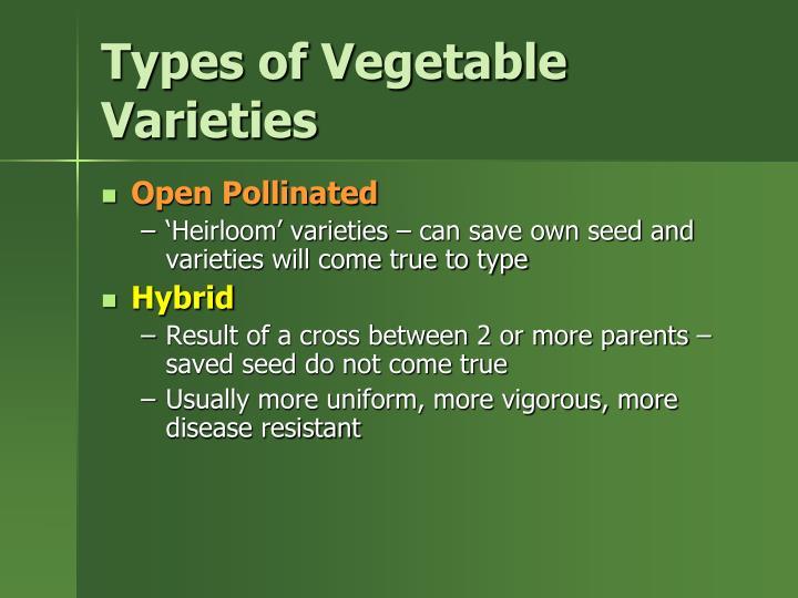 Types of Vegetable Varieties