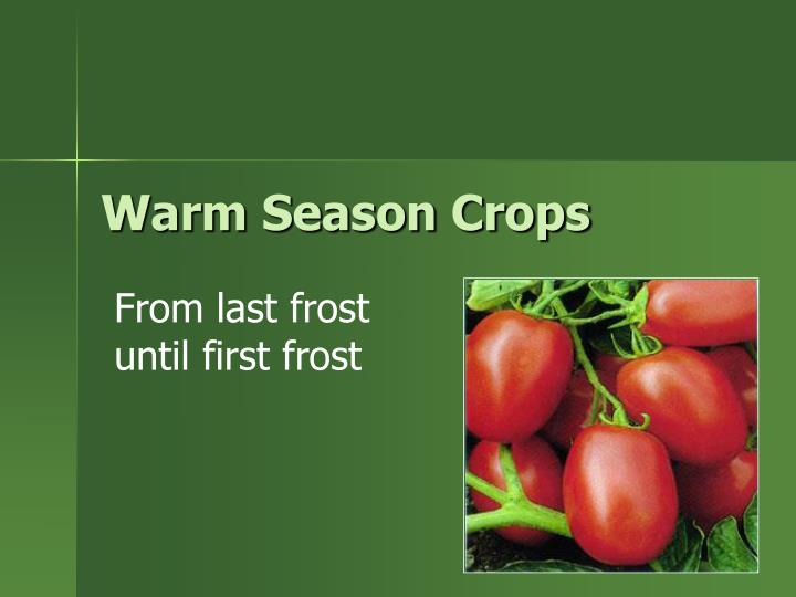Warm Season Crops