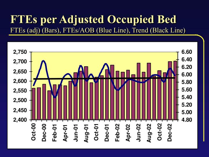 FTEs per Adjusted Occupied Bed