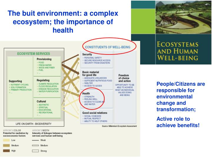 The buit environment: a complex ecosystem; the importance of health