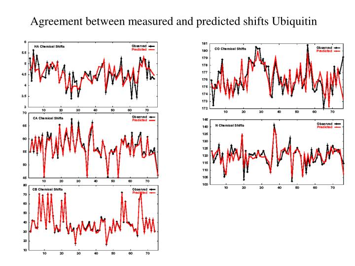 Agreement between measured and predicted shifts Ubiquitin
