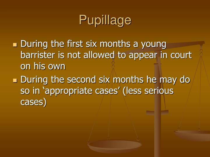 Pupillage