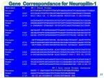 gene correspondance for neuropilin 1
