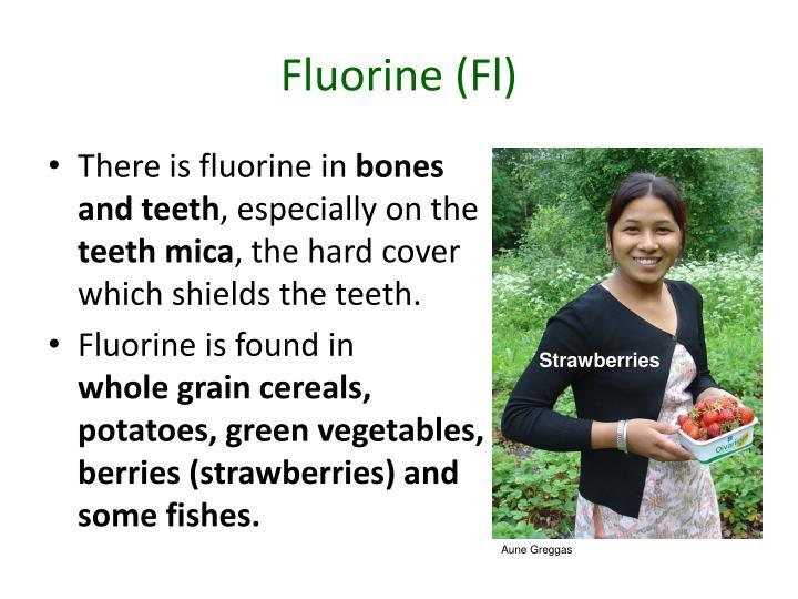 Fluorine (Fl)