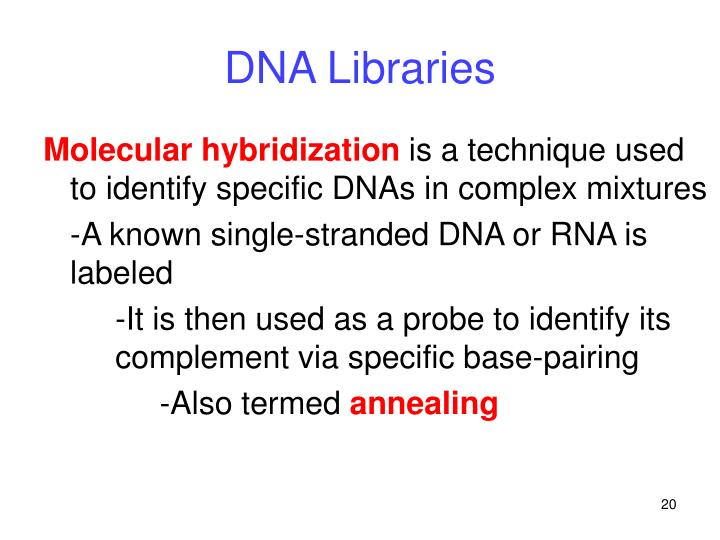 DNA Libraries