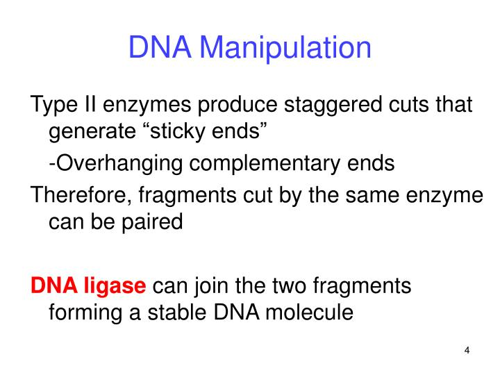 DNA Manipulation