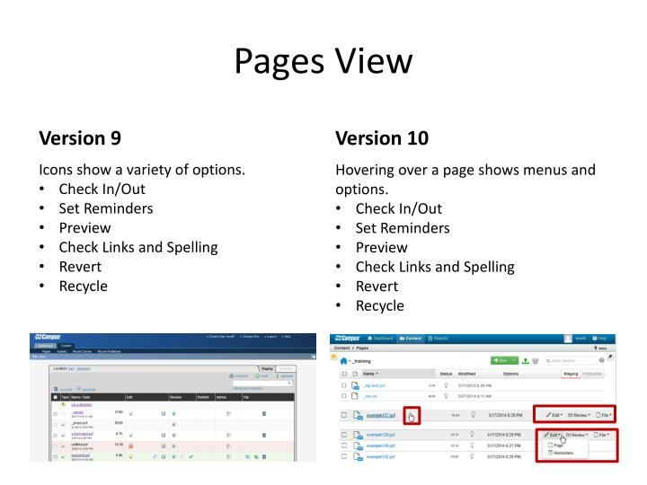 Pages View