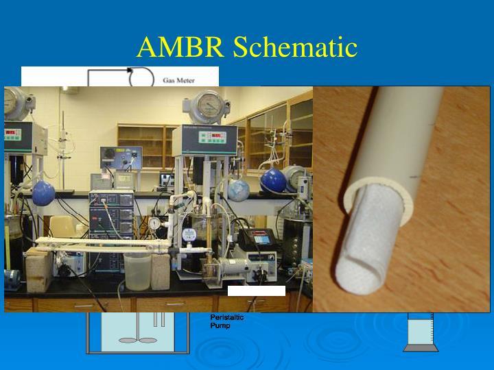 AMBR Schematic