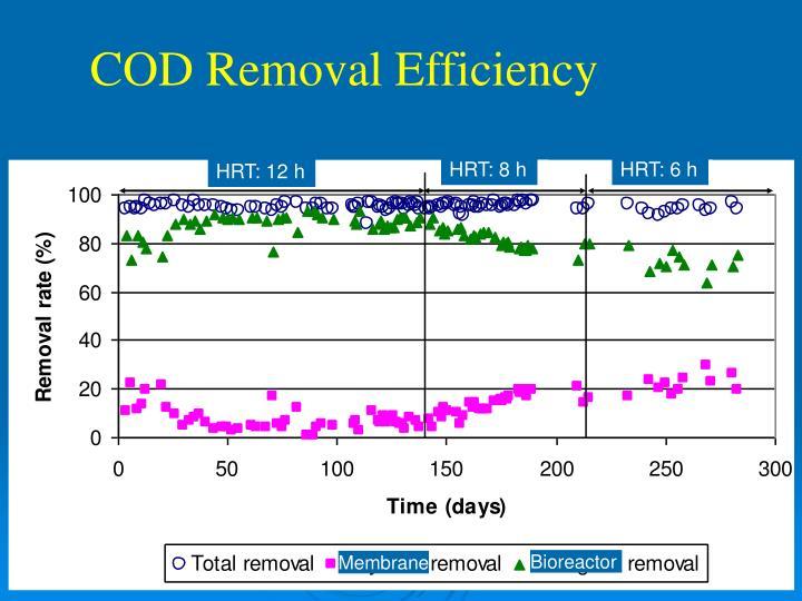 COD Removal Efficiency