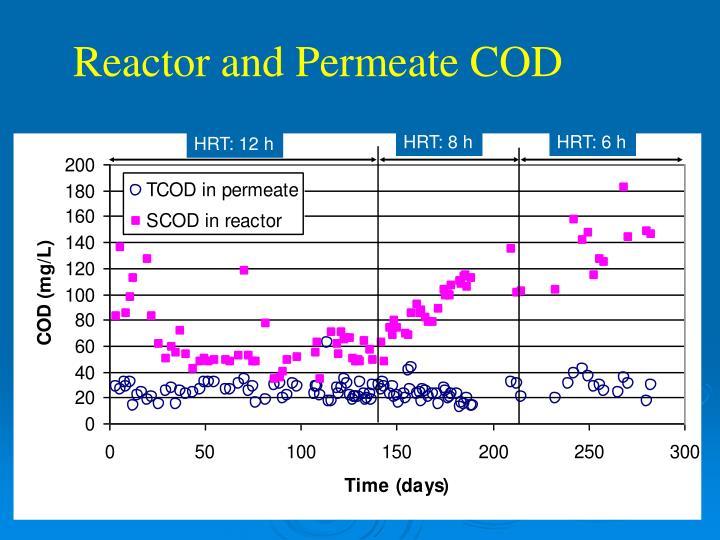 Reactor and Permeate COD