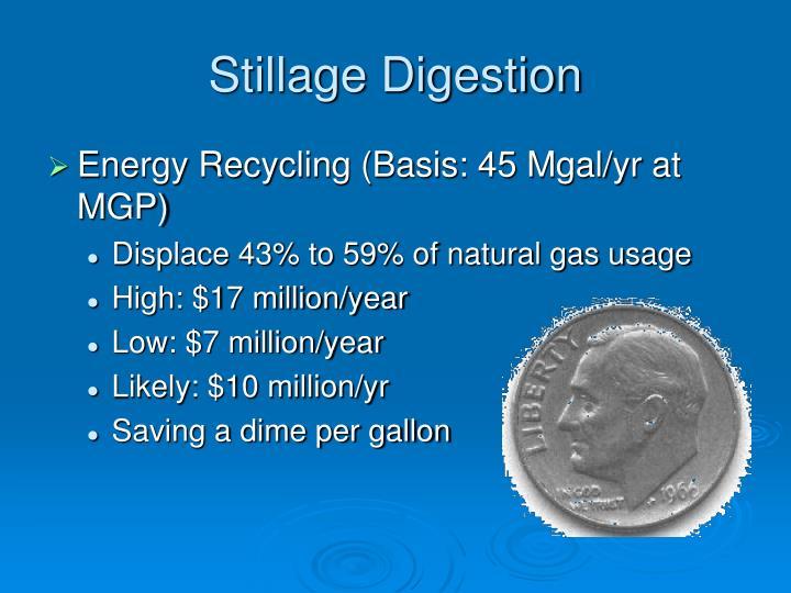 Stillage Digestion