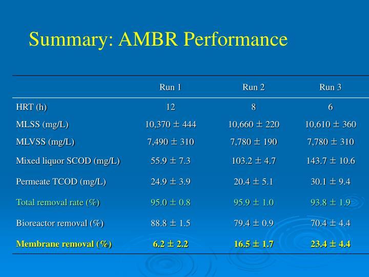Summary: AMBR Performance