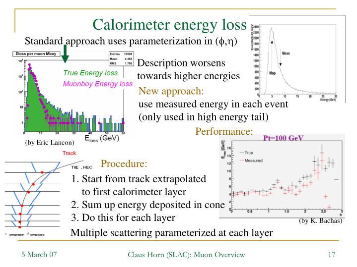 Calorimeter energy loss