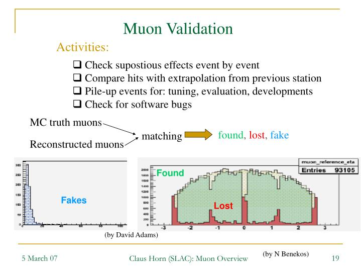 Muon Validation