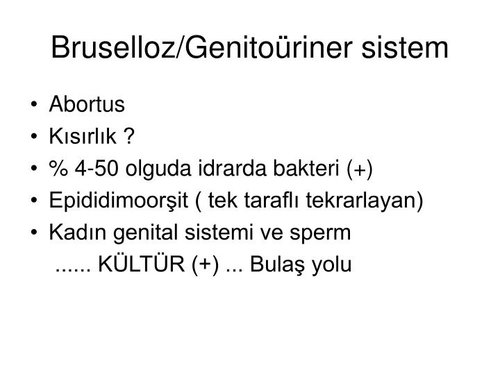 Bruselloz/Genitoüriner sistem