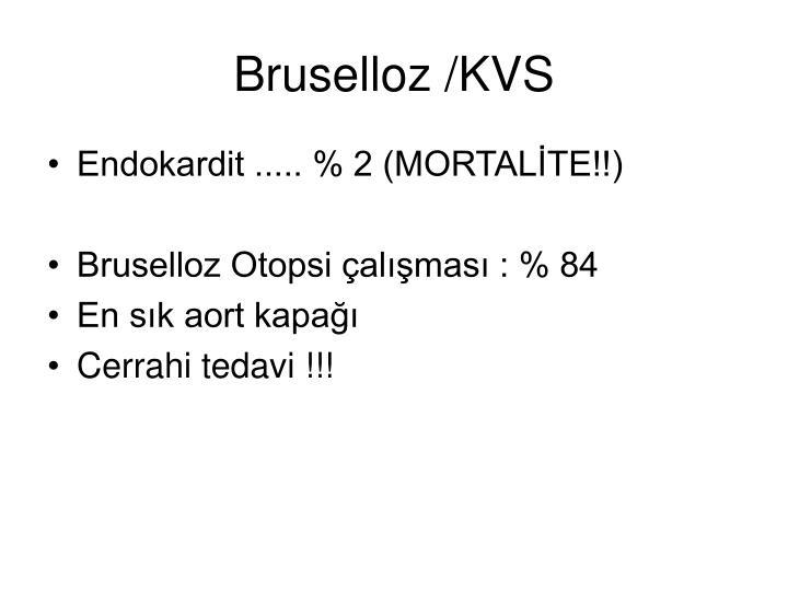 Bruselloz /KVS