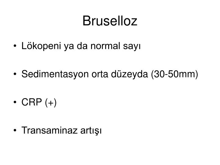 Bruselloz