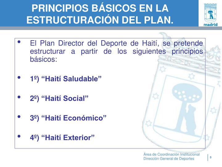 PRINCIPIOS BÁSICOS EN LA ESTRUCTURACIÓN DEL PLAN.