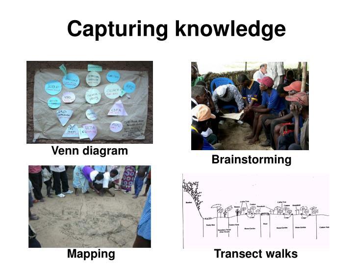 Capturing knowledge